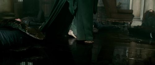 HP7-2-Potterish-TeaserTrailer-73.jpg