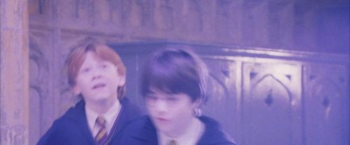 PF-Potterish_06014.jpg