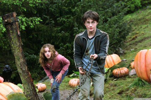 hp3-stills-hd-8.jpg