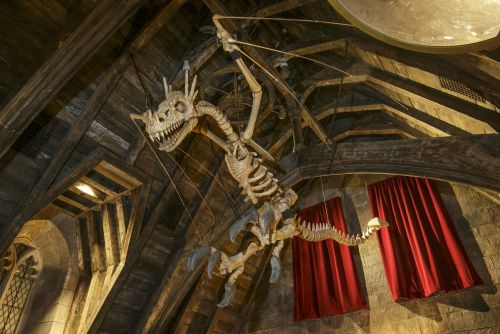 Dragon_skeleton_in_Hogwarts_Castle-WWoHP_at_USH.jpg